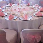 Organza sashes are available in a variety of colors.