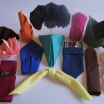 We offer a wide variety of napkin folding in numerous colors and fabrics.